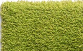 kusový koberec Velvet - zelený